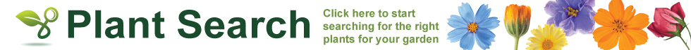 Plant-Search-Home2